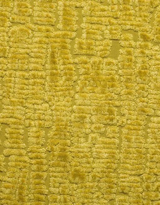GECKO-04-Mustard