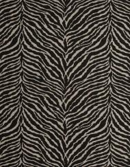 Zebra diseño completo